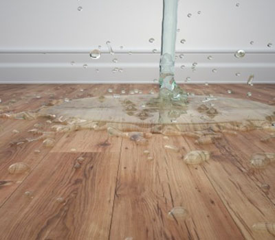 Luxury Vinyl Plank Water Proof Ferma Flooring